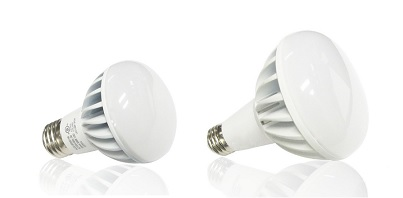 Outdoor R20 and R30 LED Bulb Canada