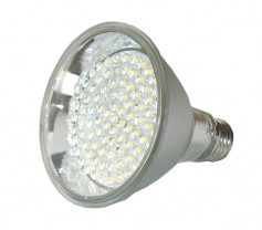 12VDC medium base LED bulb